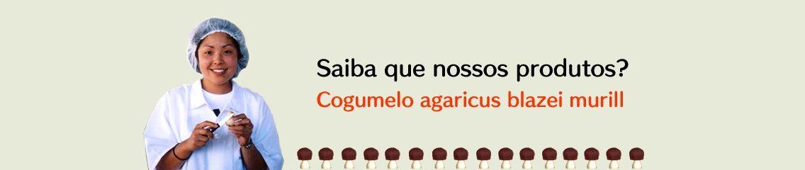 http://loja.agaricusblazeimurrill.com.br/wp-content/uploads/2018/12/banner-1b_1-1-1136x240.jpg