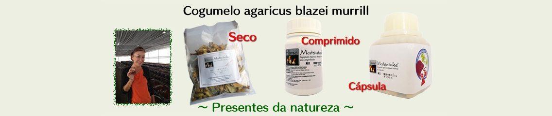 http://loja.agaricusblazeimurrill.com.br/wp-content/uploads/2018/12/banner-3b_1-1-1136x240.jpg